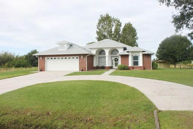 3550 S Delaware Avenue, Saint Cloud, FL 34769 (MLS #S5041613) :: MavRealty