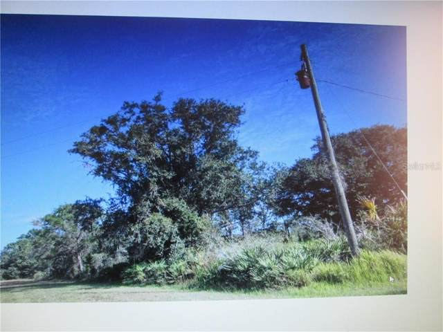 Doherty Drive, Lake Wales, FL 33898 (MLS #S5041872) :: Florida Real Estate Sellers at Keller Williams Realty
