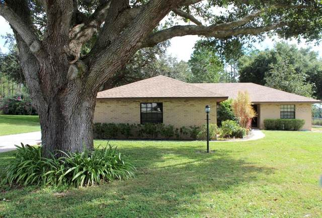 905 Hillside Court S, Winter Haven, FL 33881 (MLS #S5041882) :: Cartwright Realty