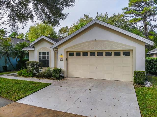 1721 Stafford Springs Boulevard, Mount Dora, FL 32757 (MLS #S5042559) :: Griffin Group