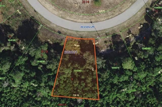 2433 Pecos Lane, Poinciana, FL 34759 (MLS #S5042824) :: Alpha Equity Team