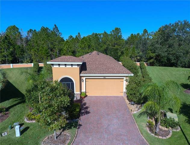 1861 Pelican Hill Way, Kissimmee, FL 34759 (MLS #S5042968) :: The Figueroa Team