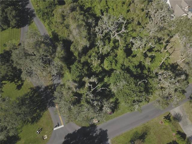 Sugar Belt Drive, Saint Cloud, FL 34771 (MLS #S5043240) :: Armel Real Estate