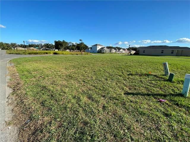 2320 Marshfield Preserve Way, Kissimmee, FL 34746 (MLS #S5043393) :: Zarghami Group