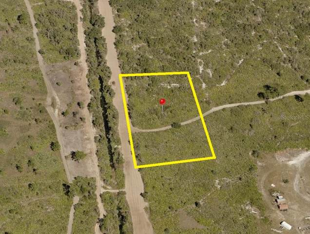Suburban Ests Sec 31...2333 002M, Saint Cloud, FL 34771 (MLS #S5043996) :: Griffin Group