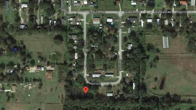 Rustic Court E, Lakeland, FL 33810 (MLS #S5044456) :: Griffin Group