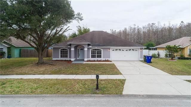 4217 Sasha Trail, Saint Cloud, FL 34772 (MLS #S5045425) :: Frankenstein Home Team