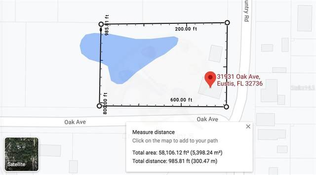 31931 Oak Avenue, Eustis, FL 32736 (MLS #S5045440) :: Visionary Properties Inc