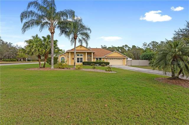 3685 Penshurst Place, Kissimmee, FL 34758 (MLS #S5045493) :: Globalwide Realty