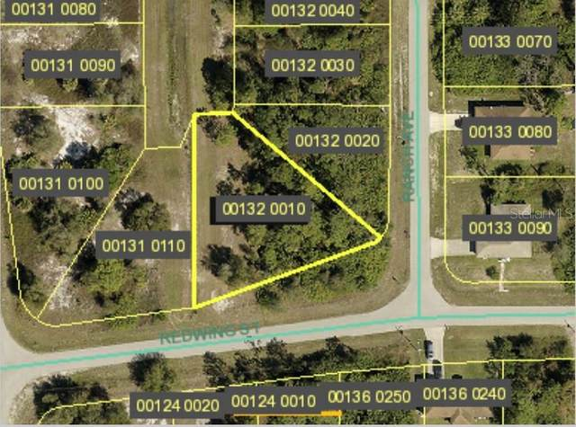 457 Redwing Street, Lehigh Acres, FL 33974 (MLS #S5046315) :: Armel Real Estate