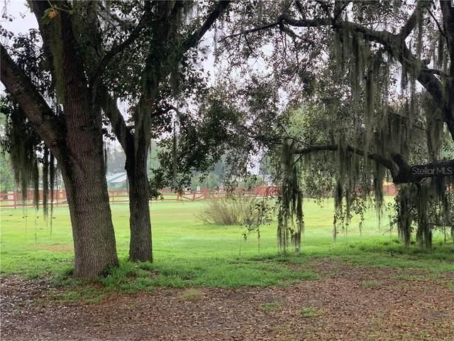 Marjorie Road, Saint Cloud, FL 34772 (MLS #S5046680) :: Pepine Realty