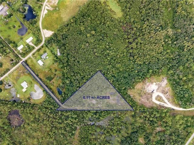 4373 Fanny Bass Lane, Saint Cloud, FL 34772 (MLS #S5047062) :: Your Florida House Team