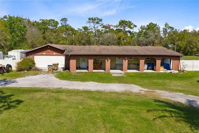 3381 Morningside Dr, Kissimmee, FL 34744 (MLS #S5047080) :: Bustamante Real Estate