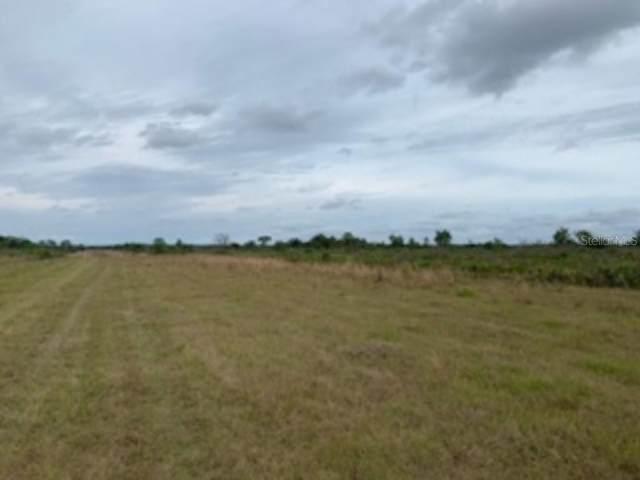 N/A, Lake Wales, FL 33898 (MLS #S5047111) :: BuySellLiveFlorida.com