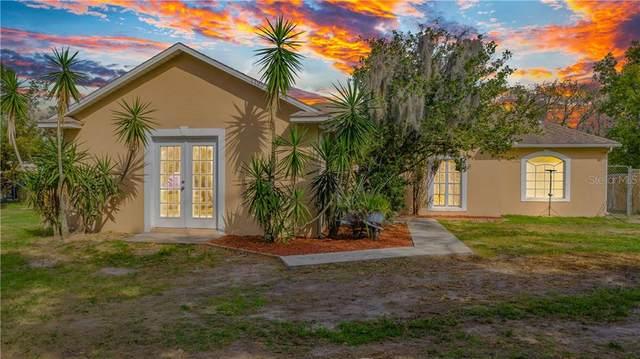 1899 Minnesota Avenue, Saint Cloud, FL 34769 (MLS #S5047433) :: Positive Edge Real Estate
