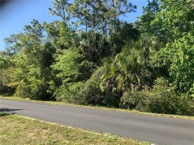 3177 Stewart Boulevard, Kissimmee, FL 34746 (MLS #S5047467) :: Everlane Realty