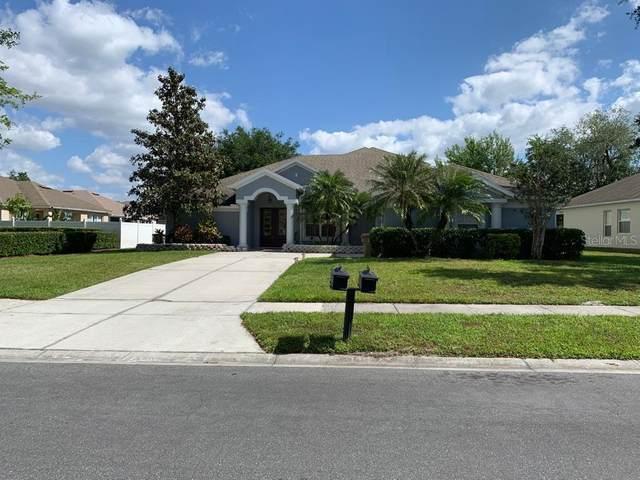 2851 Oak Hammock Preserve Boulevard, Kissimmee, FL 34746 (MLS #S5048829) :: Everlane Realty