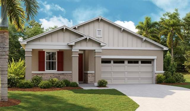 5241 Meadow Song Drive, Okahumpka, FL 34762 (MLS #S5048976) :: Zarghami Group