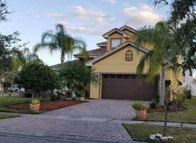 2900 Westview Court, Kissimmee, FL 34746 (MLS #S5049026) :: Carmena and Associates Realty Group