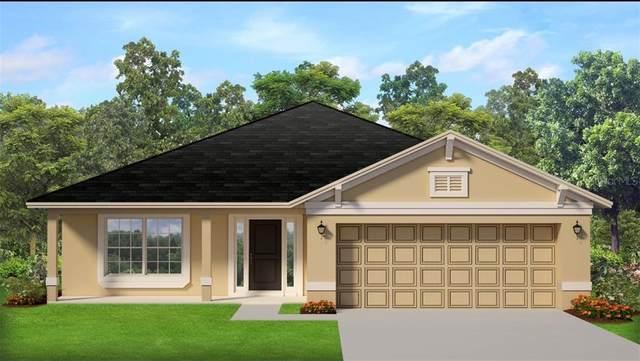 864 Vienna Drive, Winter Haven, FL 33884 (MLS #S5049055) :: Everlane Realty