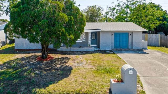 3302 Peterborough Street, Holiday, FL 34690 (MLS #S5049074) :: Sarasota Home Specialists