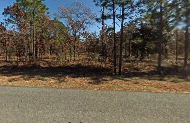 Nw Ridgewood Road, Dunnellon, FL 34431 (MLS #S5049204) :: The Lersch Group