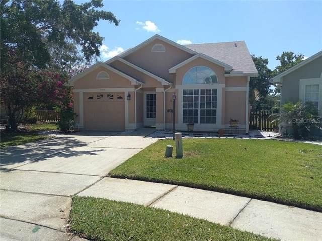 3392 Hamlet Loop, Winter Park, FL 32792 (MLS #S5049210) :: Armel Real Estate