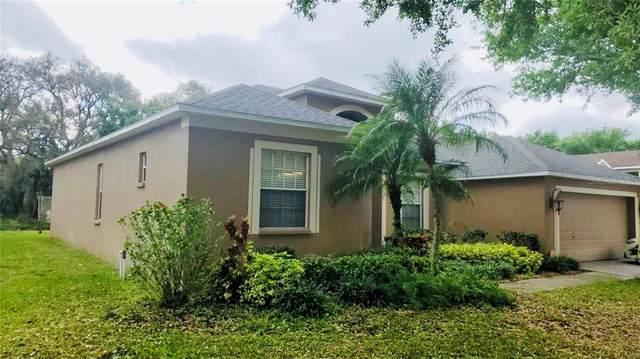 7507 Regents Garden Way, Apollo Beach, FL 33572 (MLS #S5049425) :: Rabell Realty Group