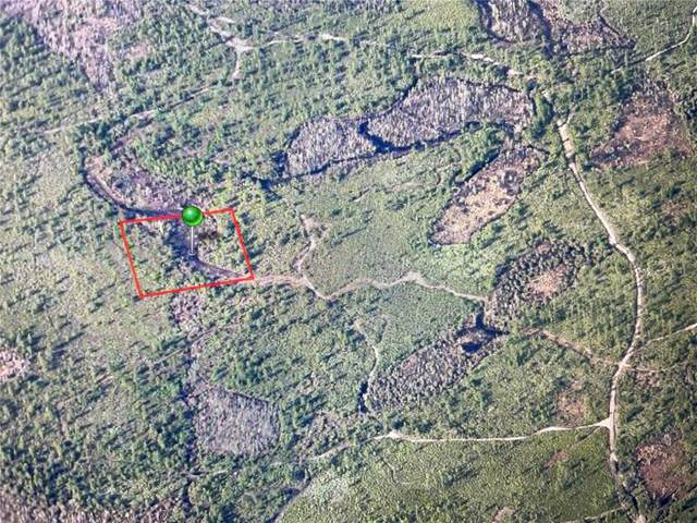 No Name - Parcel Id:47-18-34-02-12-0110, Oak Hill, FL 32759 (MLS #S5049681) :: Rabell Realty Group