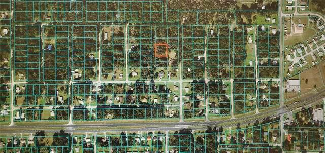 Se 134Th St, Belleview, FL 34420 (MLS #S5049688) :: Armel Real Estate