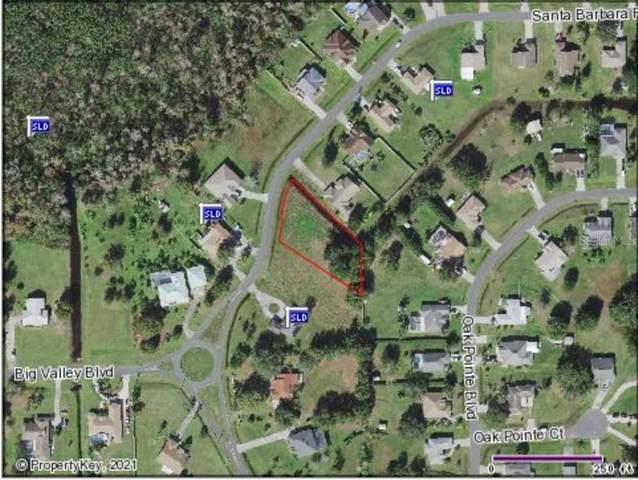 4050 Santa Barbara Road, Kissimmee, FL 34746 (MLS #S5049863) :: Armel Real Estate