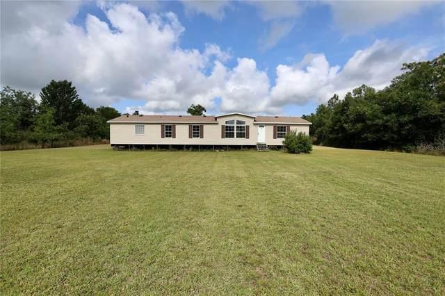 3248 Henry J Avenue, Saint Cloud, FL 34772 (MLS #S5049980) :: Premier Home Experts