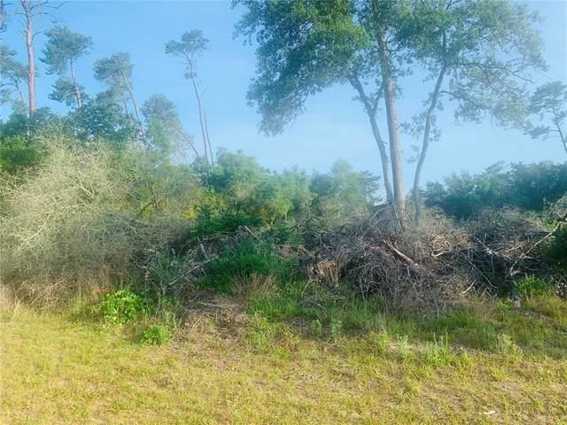 131 PLACE, Ocala, FL 34473 (MLS #S5050116) :: Aybar Homes