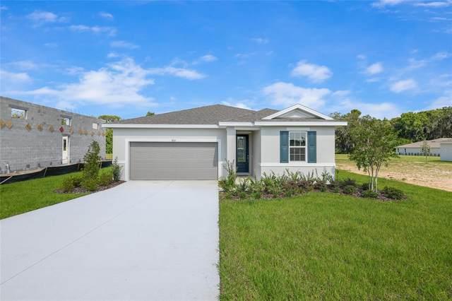 8014 Cherrystone Street, Leesburg, FL 34748 (MLS #S5050239) :: Aybar Homes