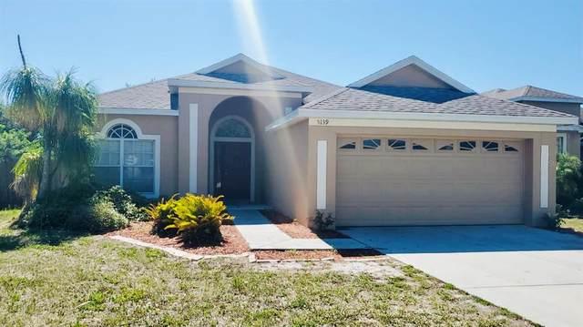 5139 Clover Mist Drive, Apollo Beach, FL 33572 (MLS #S5050453) :: EXIT King Realty