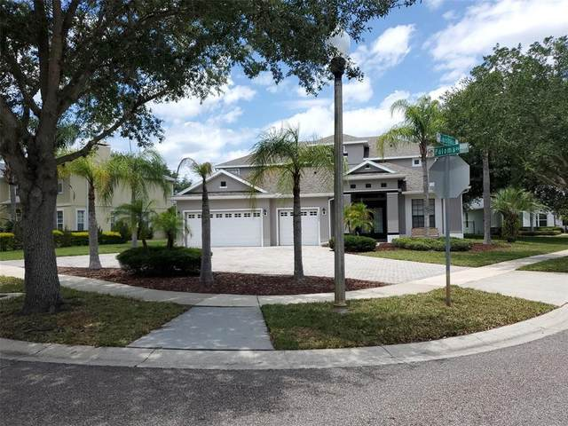 13502 Paloma Drive, Orlando, FL 32837 (MLS #S5050461) :: McConnell and Associates