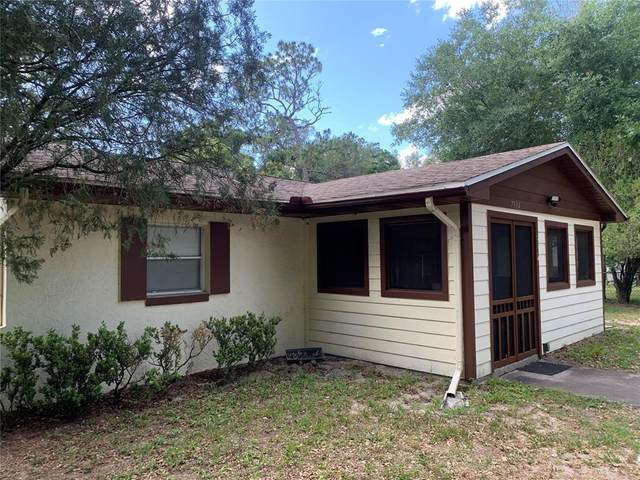 7904 Empire Avenue, Orlando, FL 32810 (MLS #S5050611) :: Young Real Estate