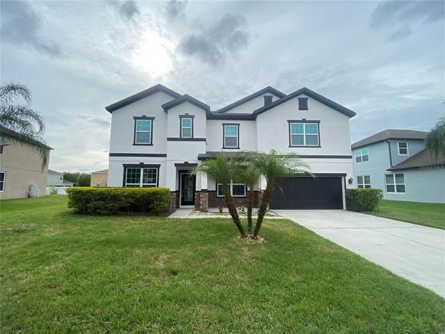 3800 Marietta Way, Saint Cloud, FL 34772 (MLS #S5050614) :: Positive Edge Real Estate