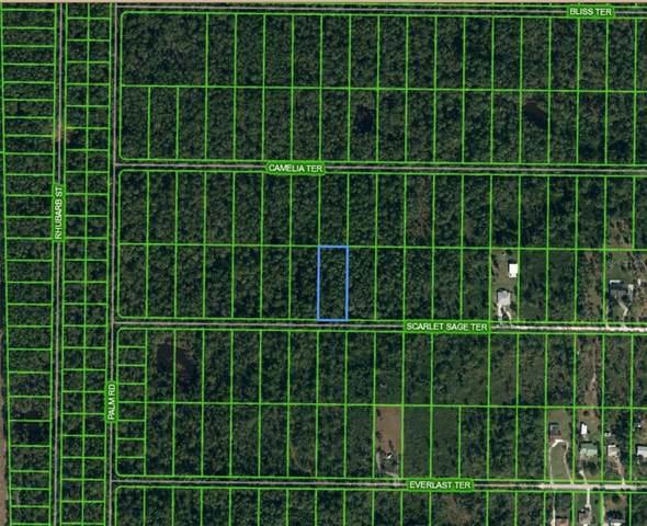 1960 Scarlet Sage Terrace, Sebring, FL 33875 (MLS #S5050931) :: Gate Arty & the Group - Keller Williams Realty Smart