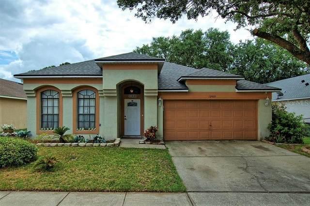 Orlando, FL 32837 :: RE/MAX Local Expert