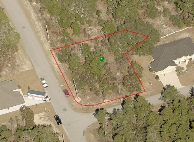 50 Lone Pine Street, Homosassa, FL 34446 (MLS #S5051388) :: Zarghami Group