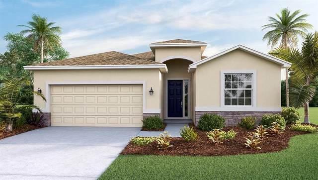 1541 San Filippo, Palm Bay, FL 32909 (MLS #S5051681) :: Everlane Realty