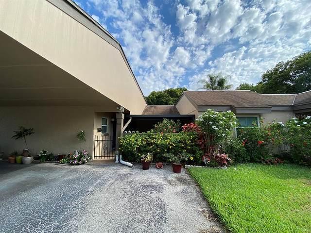 488 Windmeadows Street, Altamonte Springs, FL 32701 (MLS #S5051932) :: Zarghami Group
