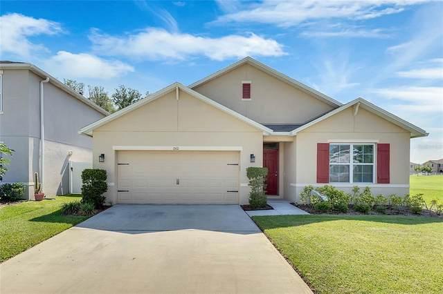 1512 Diamond Loop Drive, Kissimmee, FL 34744 (MLS #S5051981) :: Pepine Realty