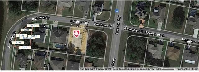 Pantheon Drive, Kissimmee, FL 34759 (MLS #S5051985) :: The Light Team