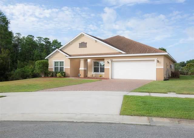 2361 Mistral Court, Kissimmee, FL 34758 (MLS #S5051986) :: Delgado Home Team at Keller Williams