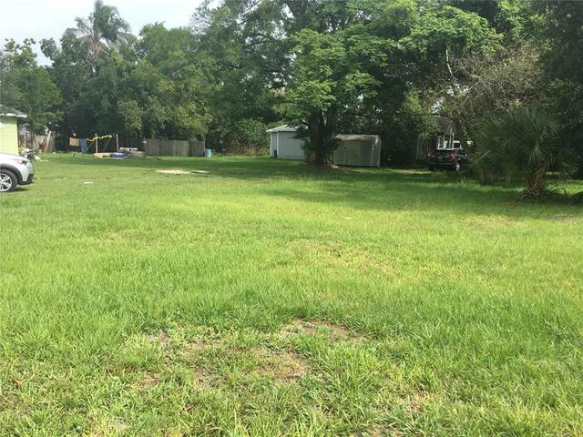 1007 Martin Luther King Boulevard, Kissimmee, FL 34741 (MLS #S5052048) :: CGY Realty
