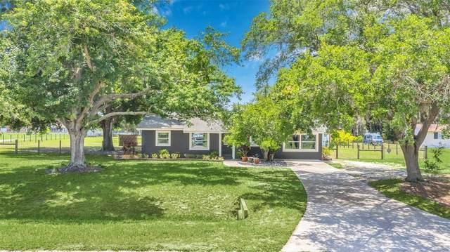 600 Orange Avenue, Saint Cloud, FL 34769 (MLS #S5052168) :: The Robertson Real Estate Group