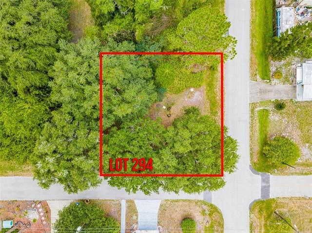 Haddock Street, Saint Cloud, FL 34771 (MLS #S5052186) :: Expert Advisors Group
