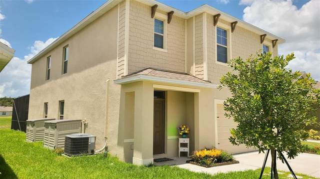 3163 Timber Hawk Circle, Ocoee, FL 34761 (MLS #S5052198) :: Vacasa Real Estate